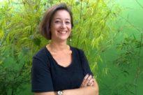 Curso de Reiki Nível I com Lara Zanoni - Dezembro 9