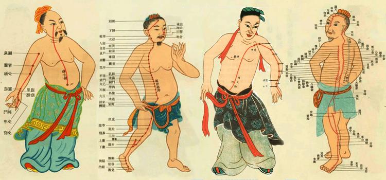 A Saúde humana e a Medicina Tradicional Chinesa 9
