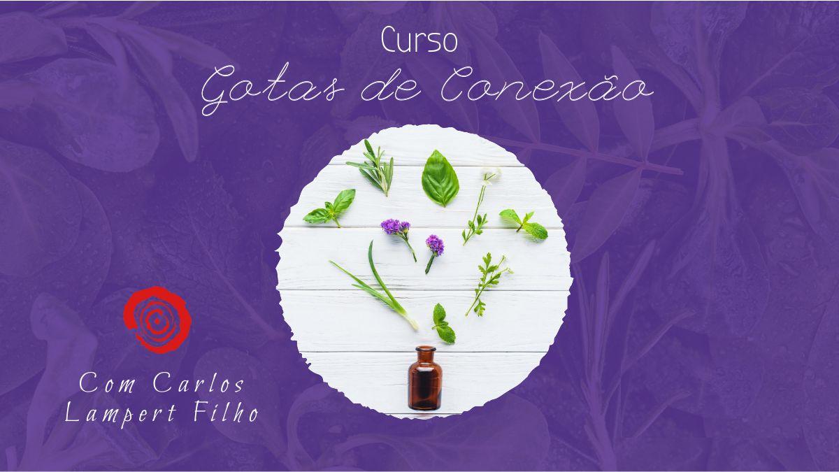 Curso Gotas de Conexão - São Paulo - 13/03 7