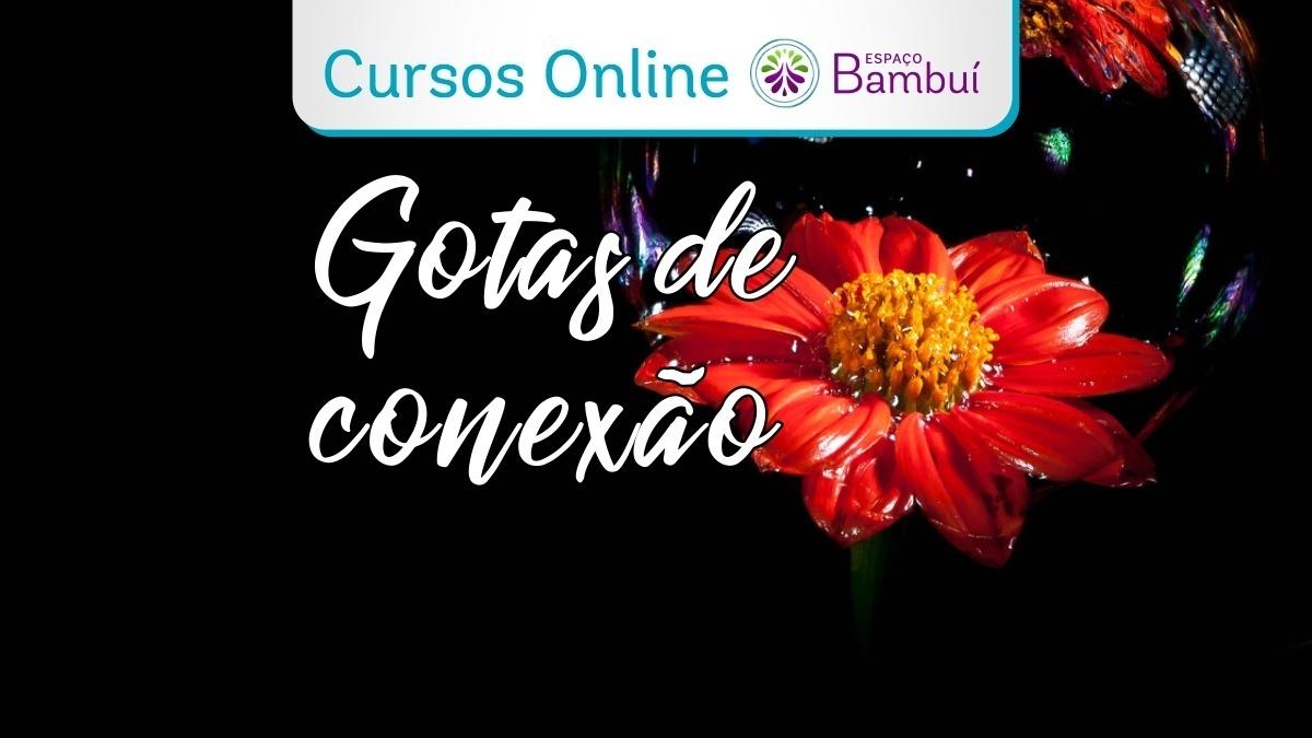 Curso Online: Gotas de Conexão - de 1 a 29/04 7