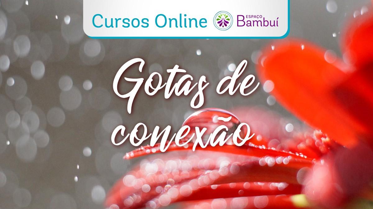 Nova edição: Curso Online Gotas de Conexão - a partir de 17/04 7