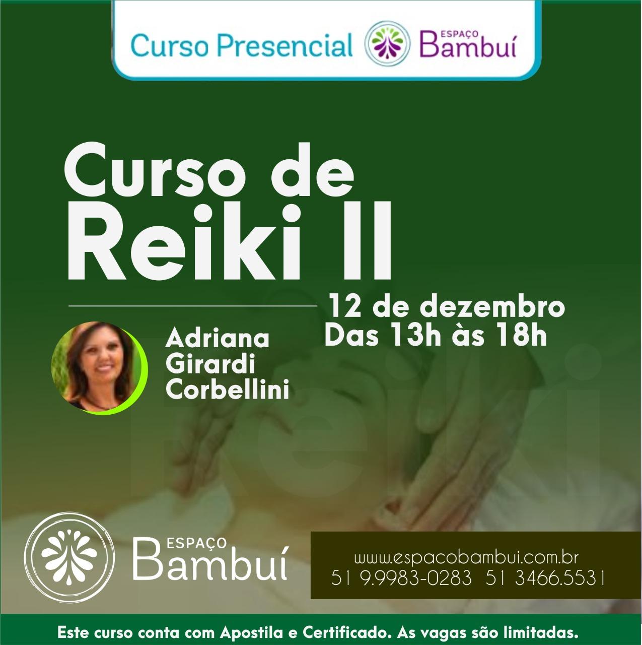Curso de Reiki Nível II com Adriana Girardi 7
