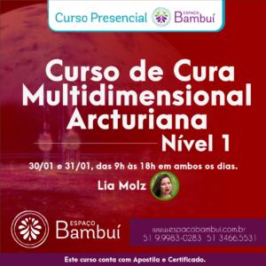 Curso de Cura Multidimensional Arcturiana - Nivel 01 2